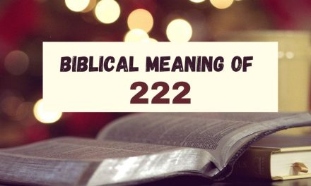 What Does the Number 222 Mean in the Bible?