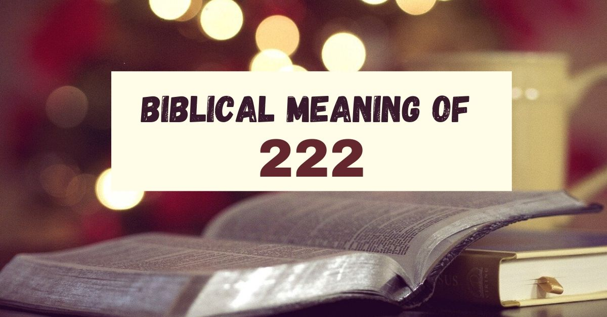biblical meaning of 222